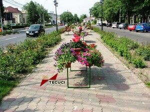 Scuar-flori_tecuci.eu