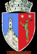 Stema orasului Tecuci