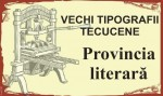 Provincia literară (4)