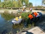 Ecologizare cu barca în Parcul Crâng RELOADED