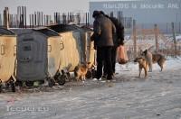 Imaginea zilei: Tecuciul, un oraş occidental (4)