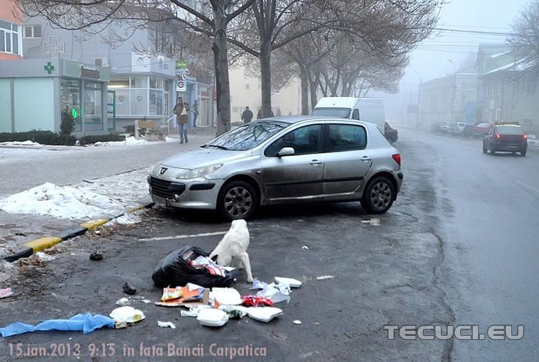 Ospat-in-strada_tecuci.eu