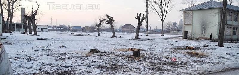 Teren devastat in cartierul Balcescu