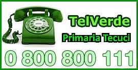 Telverde-Primaria-Tecuci-2013