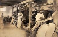 Industria la începutul secolului al XlX-lea