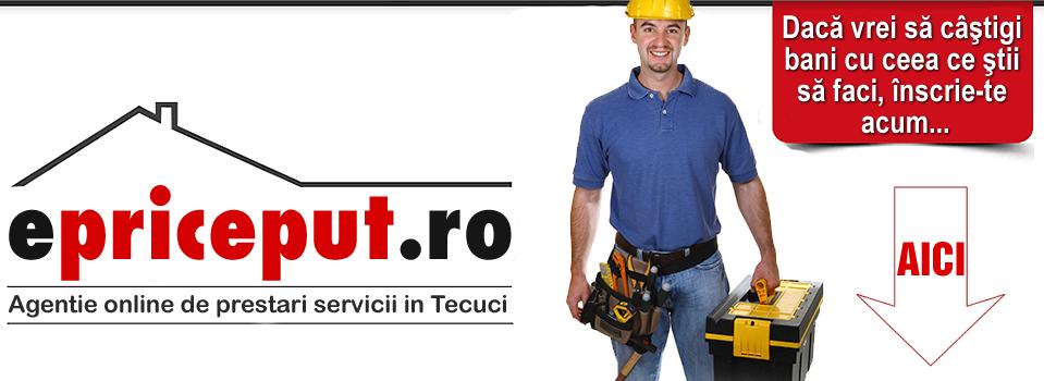 Agentia online de prestari servicii in Tecuci