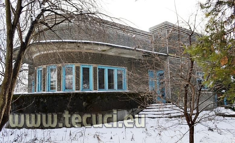 Casa ninsa din bulevardul victoriei din Tecuci